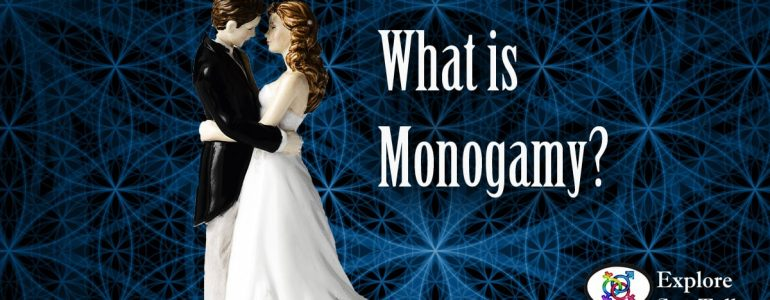 what is monogamy