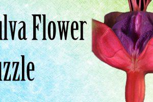 vulva-flower-puzzle-site