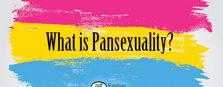what is pansexuality